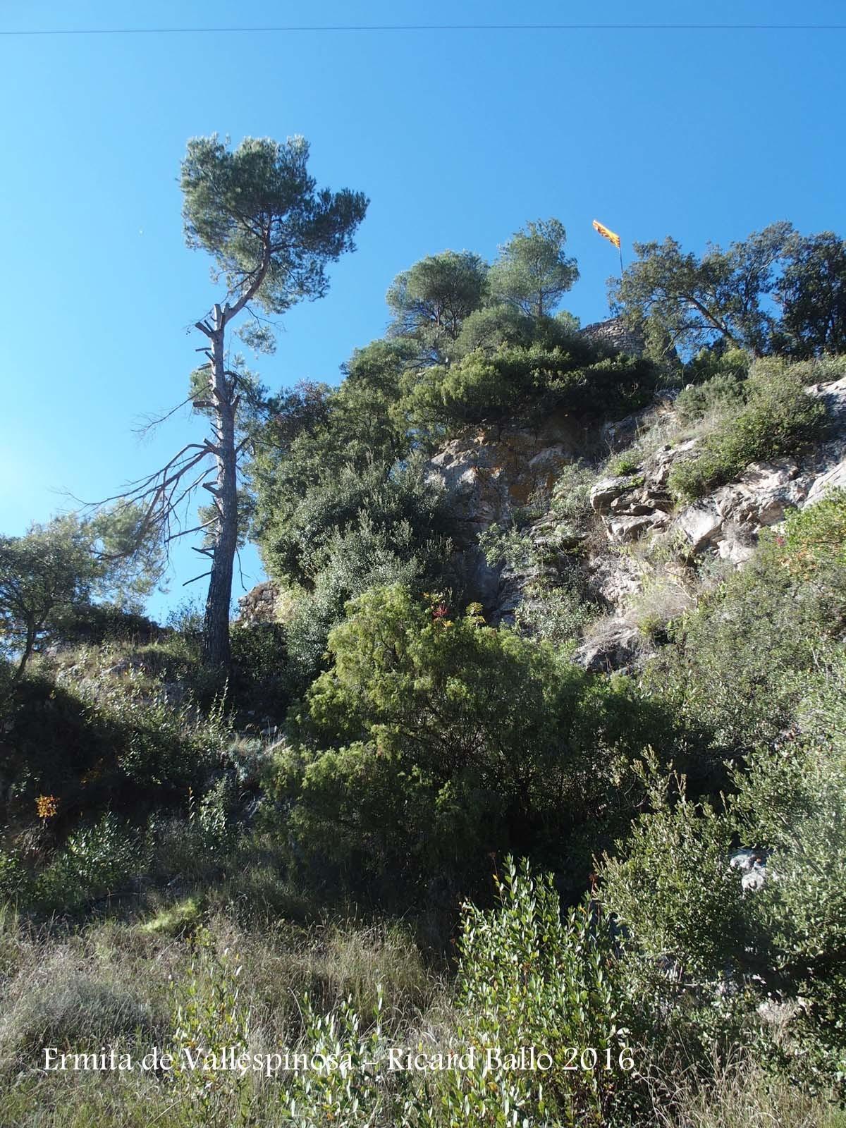 Des de l'Ermita de Vallespinosa – Pontils, es pot accedir al castell de Vallespinosa, que en aquesta fotografia podem intuir la seva presència per la senyera que hi ondeja.