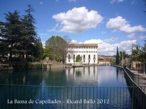 La Bassa de Capellades