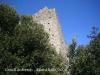 Castell de Fornils