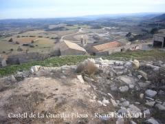 castell-de-la-guardia-pilosa-110203_517