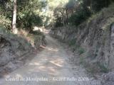 Camí de pujada al Castell de Montpalau.