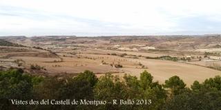 Vistes des de les restes del Castell de Montpaó – Ribera d'Ondara.