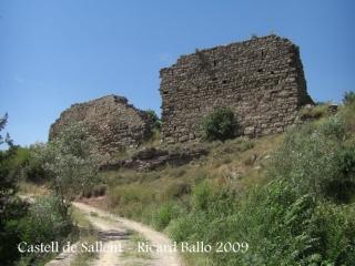 castell-de-sallent-090530_710