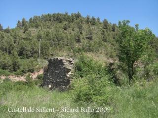 castell-de-sallent-090530_736
