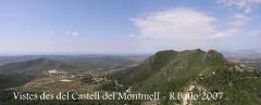 Vistes des del castell del Montmell.