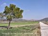 Vistes de Biosca, des de l\'església de Sant Pelegrí.