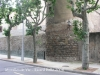 Muralles de Vic - Rambla del Bisbat.