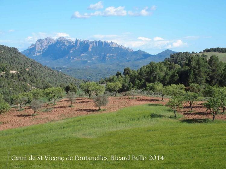 Vistes des del camí que va a Sant Vicenç de Fontanelles – Castellfollit del Boix