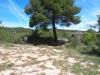 Tombes de Camps - Fonollosa.