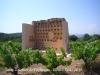 Torre colomer de l'Arboçar – Avinyonet del Penedès