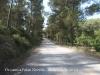 Camí de Begues a Palau Novella