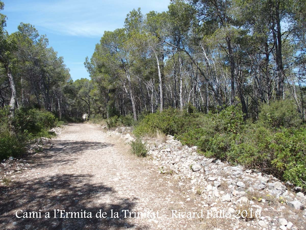 Camí a l'Ermita de la Trinitat