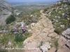 Castell de Montgrí – Torroella de Montgrí - Agafem el camí de baixada. En aquest dies primaverals del mes d'abril, les vores del camí estan entapissades de belles flors silvestres