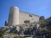 Castell de Montgrí - Torroella de Montgrí - Poc abans d'arribar, es veu aquesta impressionant vista de la fortalesa
