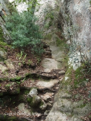 Camí al castell de Solius