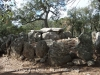 Dolmen de la Cova d'en Daina – Santa Cristina d'Aro
