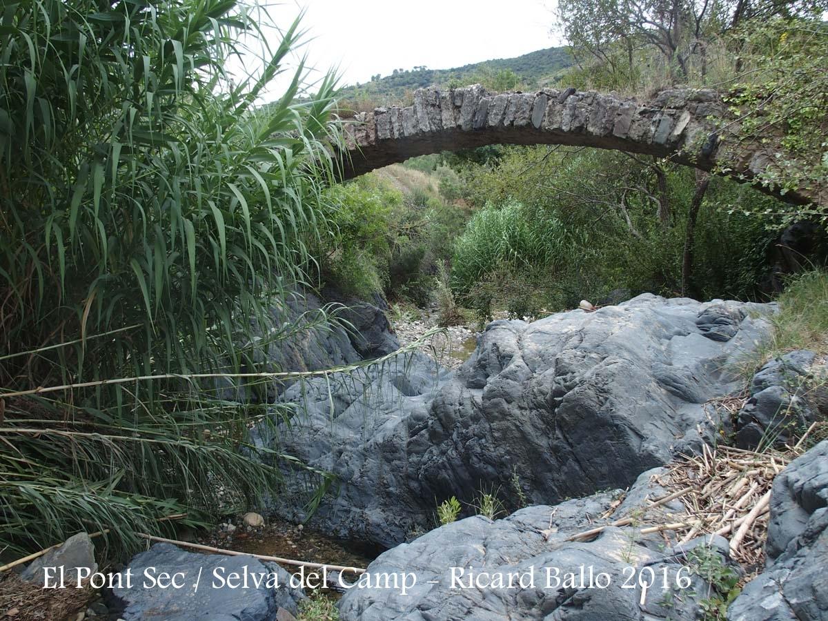 El Pont Sec – Selva del Camp - Fotografia obtinguda des del llit del riu