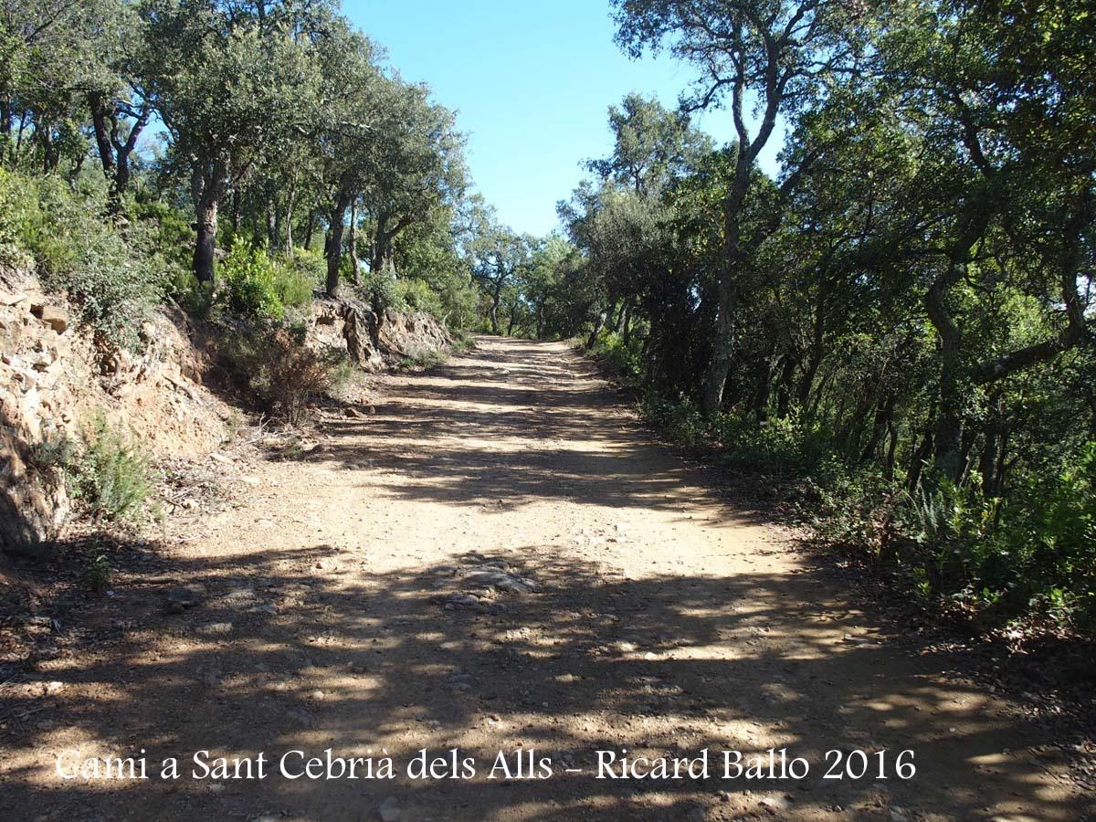 Camí a l'església de Sant Cebrià dels alls