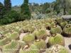 Jardí Botànic Pinya de Rosa – Blanes