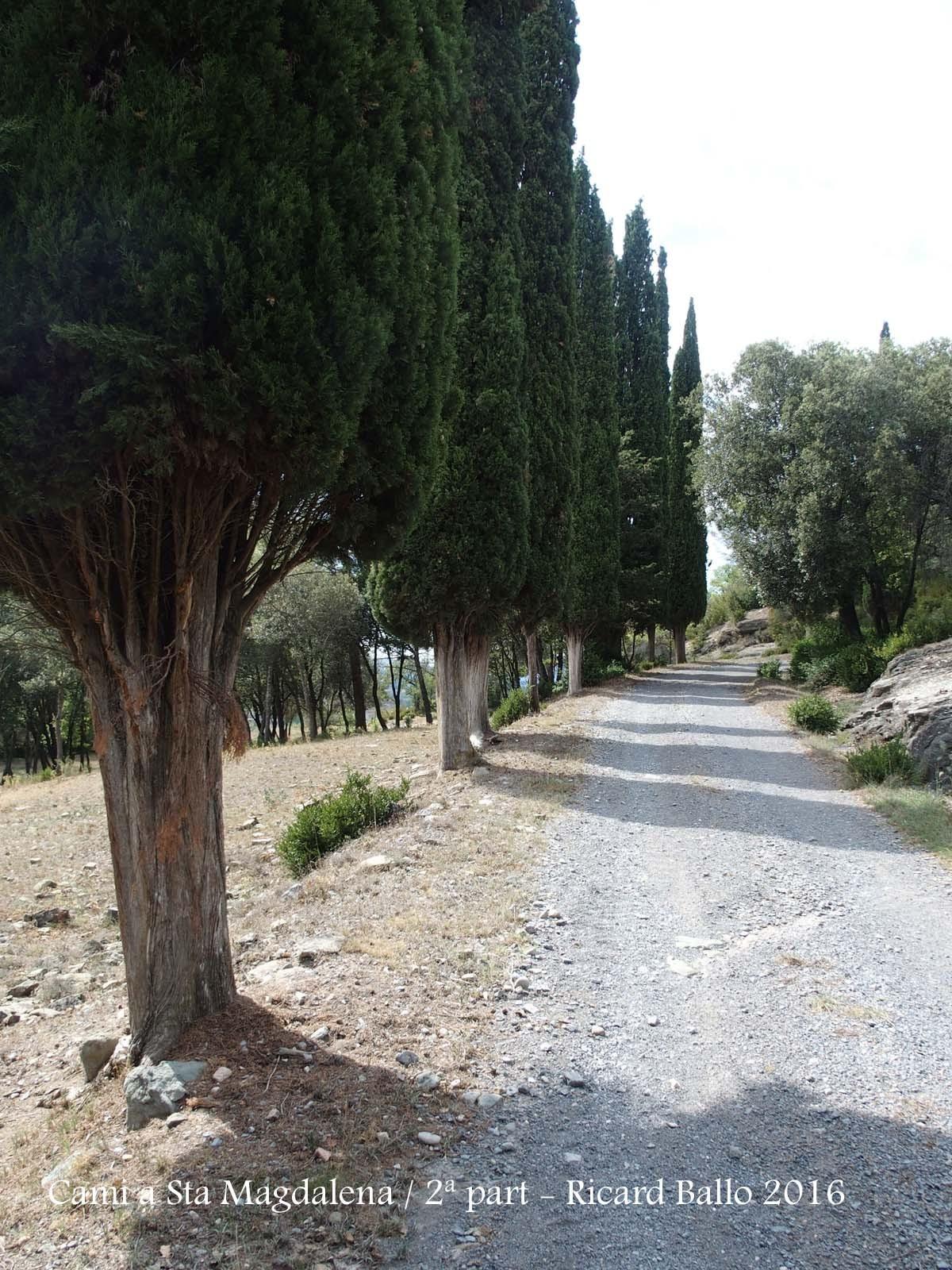 Monestir de Santa Magdalena de Conangle-2ª Part del camí