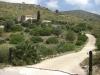 Camí a Palau Novella-Vallgrassa