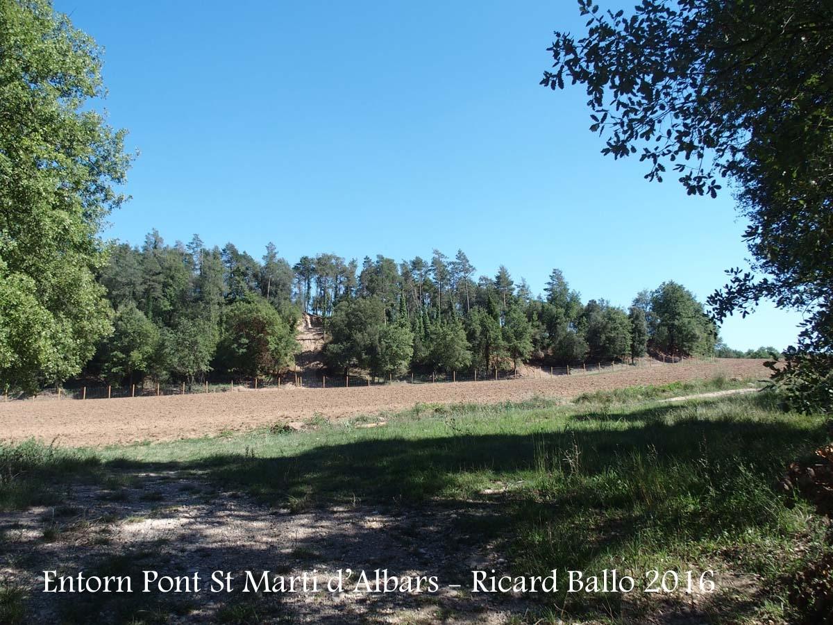 Pont de Sant Martí d'Albars - Entorn