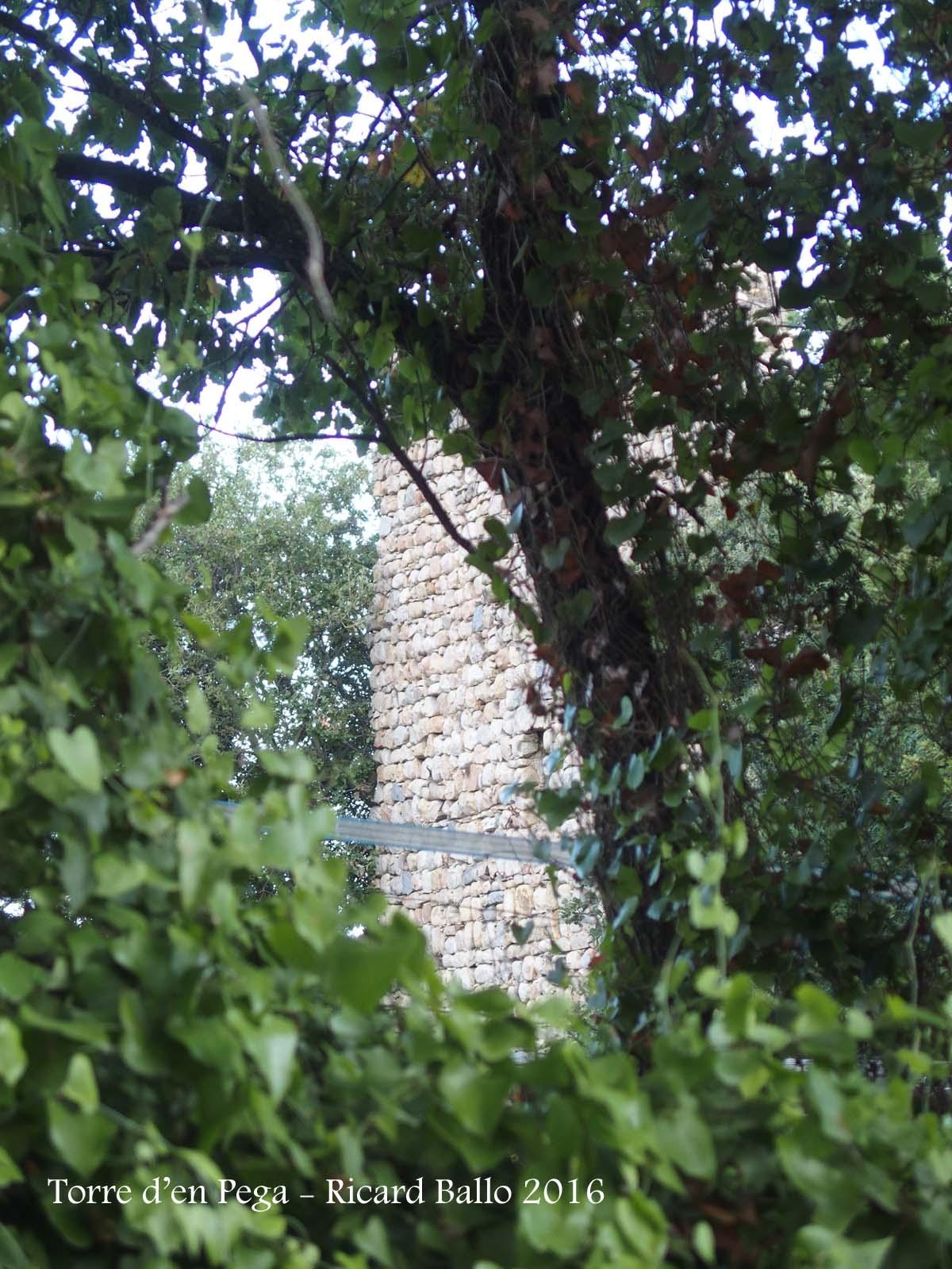 Torre d'en Pega – Riells i Viabrea - Fotografia obtinguda passant l'objectiu de la màquina de fotografiar entre mig del filat de la porta d'entrada a la finca