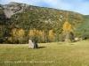 A la vora de l'Antic Santuari de Paller de Dalt