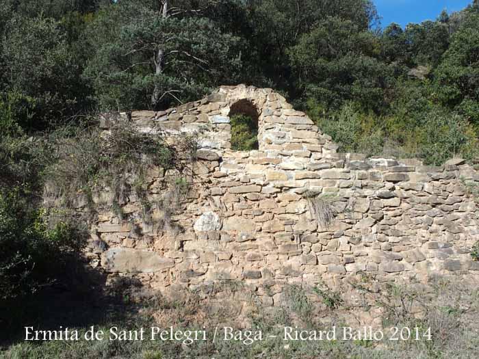 Sant Pelegrí.