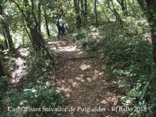 Camí a l'Església de Sant Salvador de Puig-alder