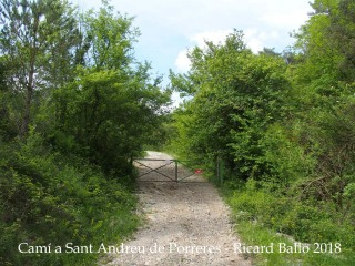 Camí a Sant Andreu de Porreres