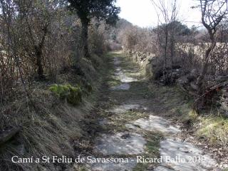 Camí a  Sant Feliu de Savassona