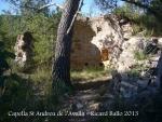 Capella de Sant Andreu de l'Avellà – Font-rubí