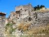 Una vista de les restes de les cases de Palamós – Sant Guim de Freixenet