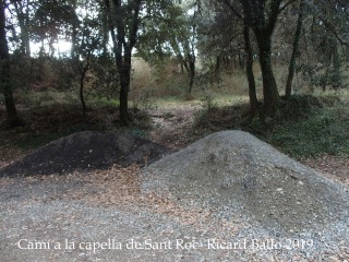 Camí a la Capella de Sant Roc-Sant Pere de Torelló
