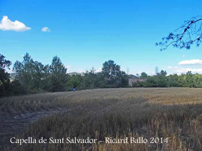 Capella de Sant Salvador-Jorba-Final Itinerari