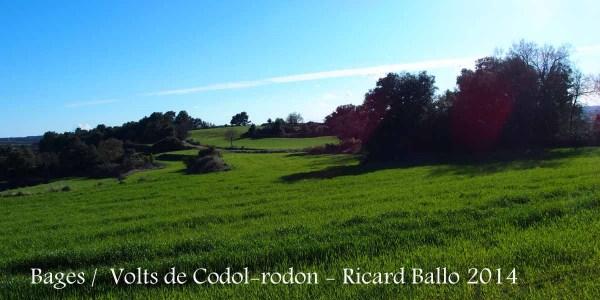 Paisatge del Bages pels voltants de la capella de Santa Magdalena de Còdol-rodon.