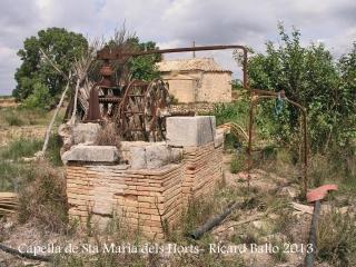 Capella de Santa Maria dels Horts – Vilafranca del Penedès - Sínia.