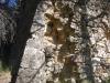 Capella de Santa Maria d'Orpinell – Mediona