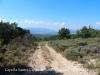 Una part del camí d'accès a la Capella de Santes Creus – Pinell de Solsonès