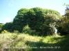 Capella de Sant Miquel de Vilaclara - Darrera d\'aquesta espessa massa de vegetació hi ha les restes del mas i de l\'església. En una perfecta simbiosi, els uns s\'aguanten amb els altres ...