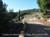 Camí d'accés a la Cartoixa de Montalegre – Tiana
