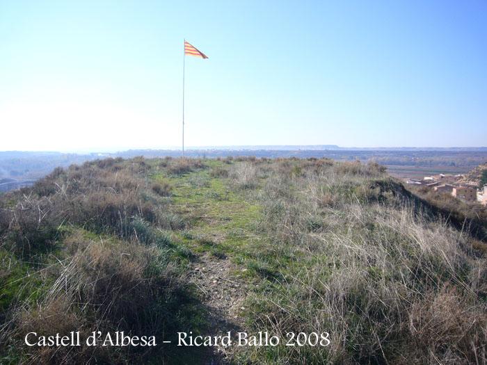 castell-dalbesa-081115_502