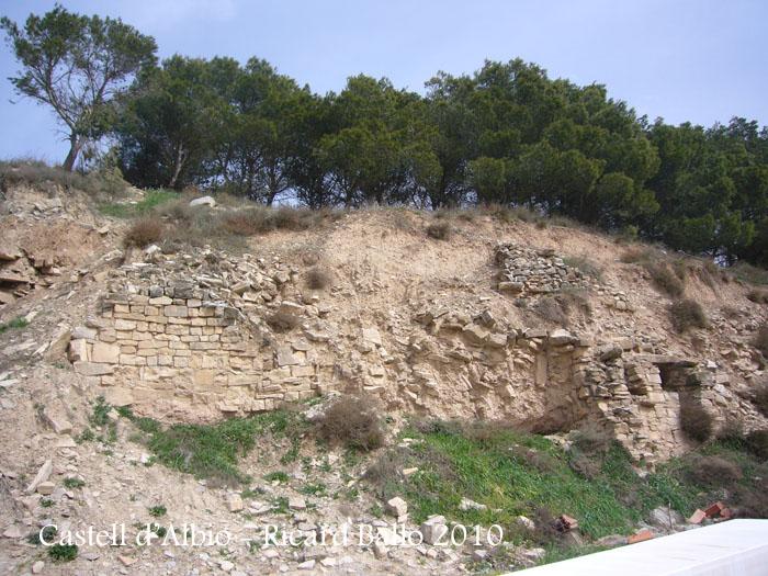 castell-dalbio-100320_501