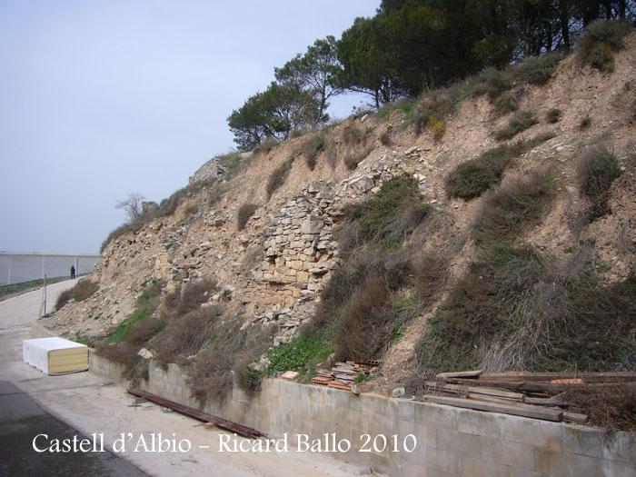 castell-dalbio-100320_505
