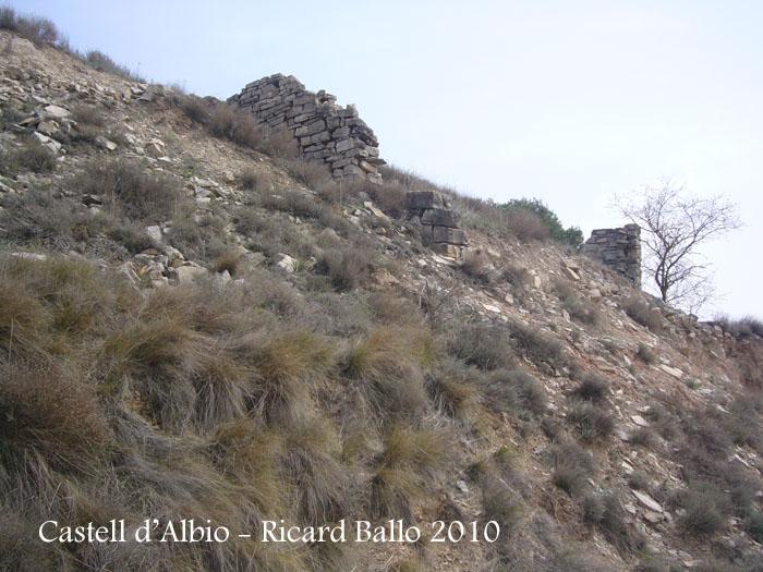 castell-dalbio-100320_508