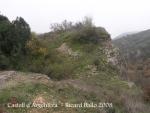 Castell d'Argentera