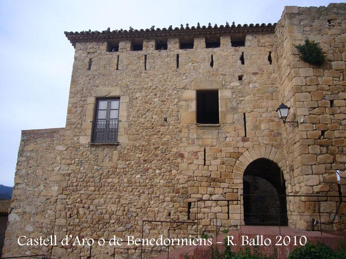 castell-de-castell-daro-100306_541