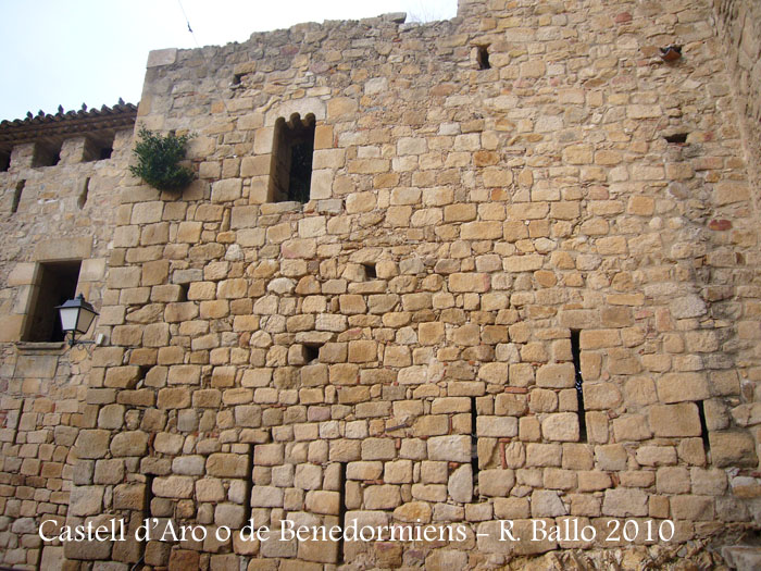 castell-de-castell-daro-100306_543