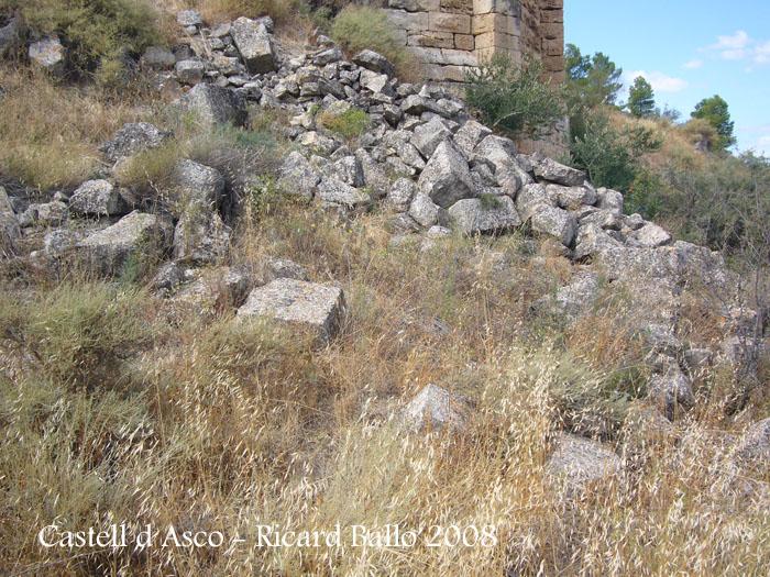 castell-d-asco-080913_528